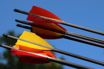 Nahaufnahme Pfeile in Zielscheibe Bogensport
