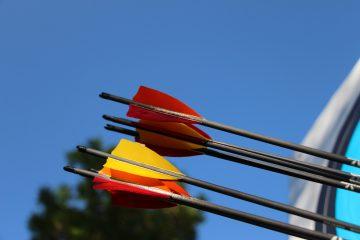 Pfeilenden vor blauem Himmel im Bogensport